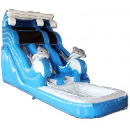 (C) 18ft Dolphin Dual Lane Water Slide
