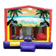 (C) Paradise 5n1 Bounce Slide combo (Wet or Dry)